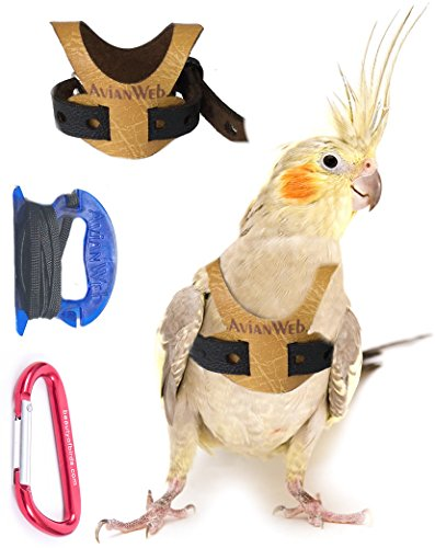 Avianweb EZ Bird Harness with 6 Ft Leash (Cockatiels) ()