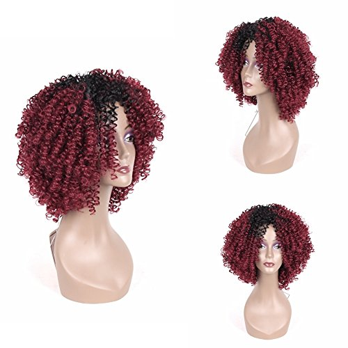 Jiayi Wigs for Black Women Short Kinky Curly Synthetic Wig Afro Synthetic Hair Wigs Fluffy Wavy with Wig Cap Ombre Color (Dark to Bug)