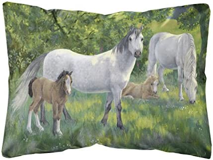 Caroline s Treasures ASA2195PW1216 Group of Horses Fabric Decorative Pillow, 12H x16W, Multicolor