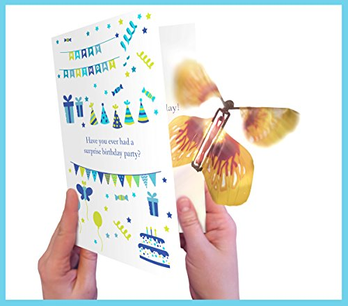 Surprise! Birthday Card with Magic Butterfly by wahoocards - a funny birthday card with a unique (Butterfly Birthday Cards)