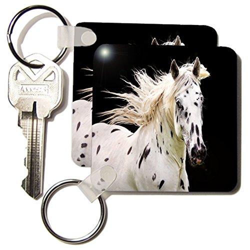 3d Rose 3dRose Beautiful Appaloosa Horse - Key Chains, 2....
