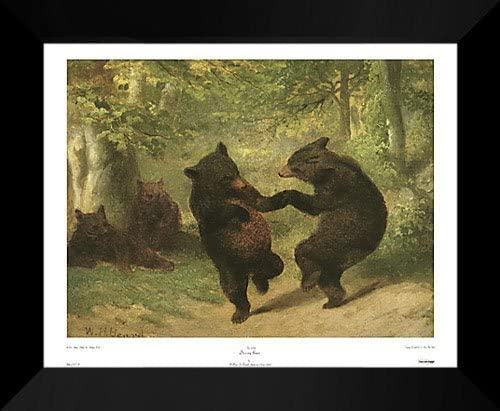 Beard Framed /& Matted The Bear Dance by William H