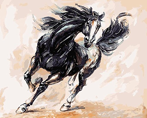 JynXos Wooden Framed Paint By Number Linen Canvas DIY Painting - Black Horse