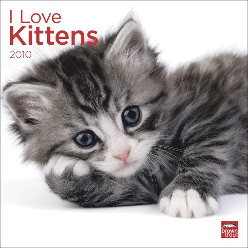 Kittens, I Love 2010 Square Wall (Multilingual Edition) ()