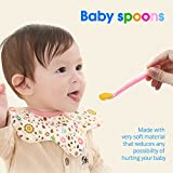 Baby Food Feeder, YCGRE Reusable Fresh Fruit Feeder Pacifier BPA Free Infant Teething Toy with 2 Pack Baby Feeding Spoons for Toddler & Kids Bonus 3 Pcs Replacement Silicone Pouches