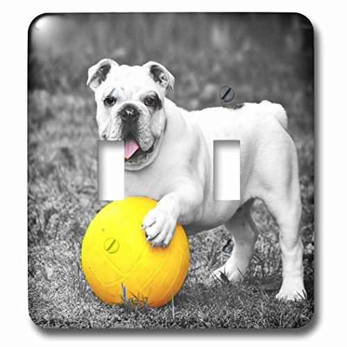 RinaPiro - Dogs - French Bulldog. Playful dog. Cool image. - Light Switch Covers - double toggle switch (Playful Bulldog)