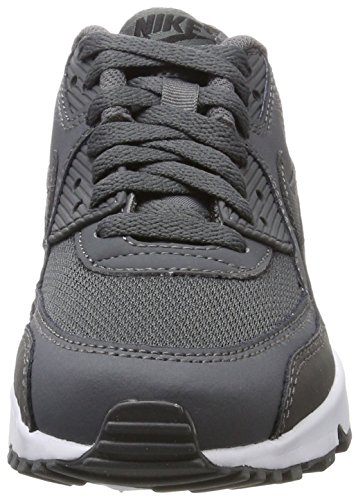 Nike Air Max 90 Mesh (Gs), Zapatillas para Niños Gris (Dark Gre/dark Grey-black-white)