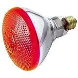 Xcdiscount S4424 100 Watt BR38 incandescente de 120 volts Medium Base Ampoule, Rouge