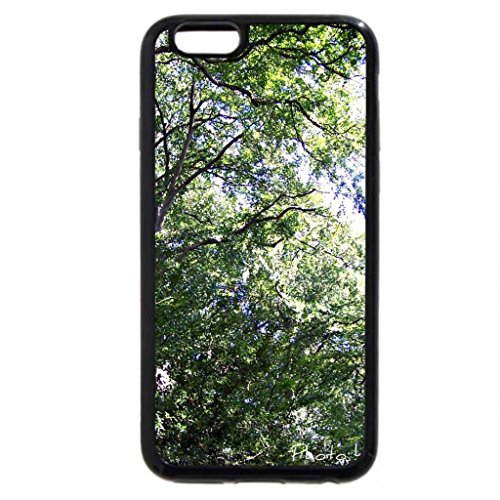 iPhone 6S / iPhone 6 Case (Black) Face of a tree