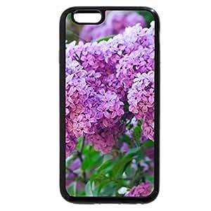 iPhone 6S / iPhone 6 Case (Black) Pretty Lilacs