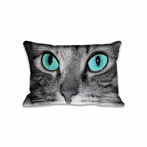 Tabby Cat Face - Custom Design Close Up Of A Grey Tabby Cat Face Pillow Cases Zippered , Standard Queen Size Animals Pillowcase - 20X30inch Pets Cushion Covers Two Size Print