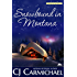 Snowbound in Montana (Carrigans of the Circle C Book 4)