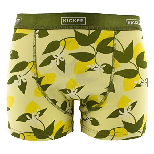 Kickee Pants Men's Print Boxer Brief - Lime Blossom Lemon Tree, Medium