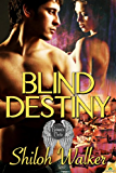 Blind Destiny (Grimm's Circle Book 7)