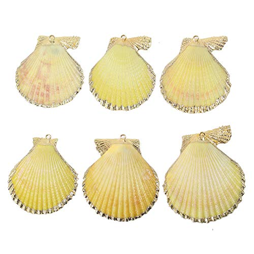 (6 PCS Pack Natural Yellow Large Sea Clam Shells Pendant Handmade Plated Real Gold Scallop Shells Charms Bulk for Jewelry Making)