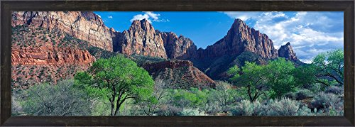 Cottonwood trees and The Watchman, Zion National Park, Utah, USA by Panoramic Images Framed Art Print Wall Picture, Espresso Brown Frame, 39 x 14 ()
