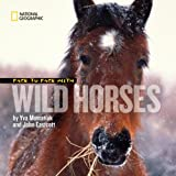 Face to Face with Wild Horses, Yva Momatiuk, 1426304676