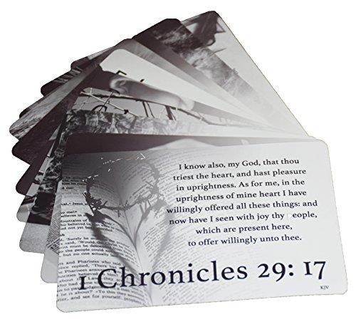 Men's Scripture Cards (10-Pack) KJV