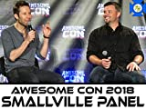 Smallville Panel with Tom Welling and Michael Rosenbaum at Awesome Con 2018