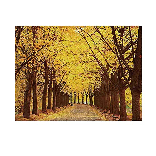 - Landscape Photography Background,Botanical Garden Autumn Leaves in The Fall Linden Alley in Kiev Ukraine Backdrop for Studio,10x10ft