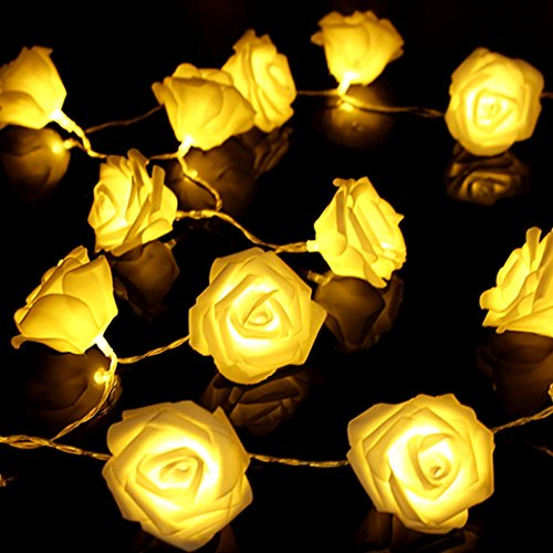 Saebye Rose Flower String Light, 2.5M 20LED Warm White Blossom Fairy Light for Valentine's, Wedding, Party, Chrismas, Indoor Decoration/Battery Powered