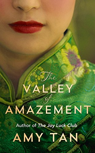 Download The Valley of Amazement ebook