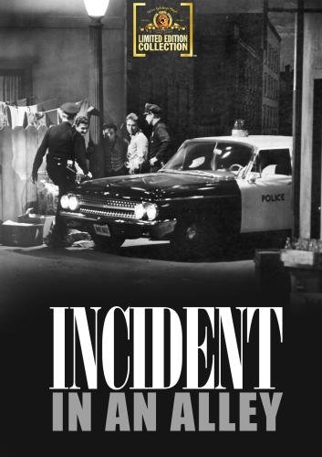 Incident In An Alley - Medford Stores In