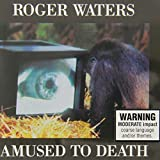 Amused To Death by Roger Waters