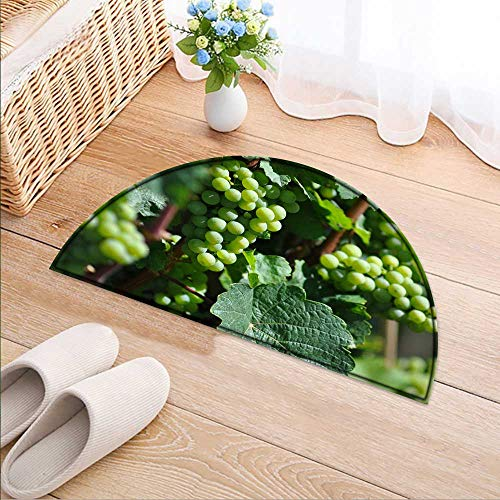 Kitchen Rugs Floor mats Grapes with Green Oil Waterproof Semi-Circular Door Mat Floor Mats W35 x H24 INCH
