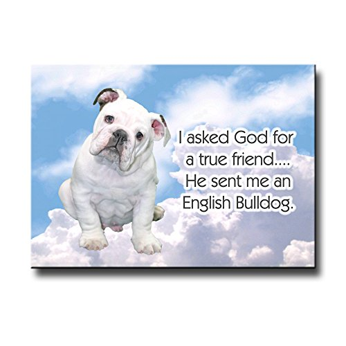 True Bulldog - 9
