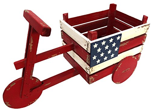 Alpine Corporation BKY102HH American Flag Tricycle Wood Planter, 11 Inch Tall, 11