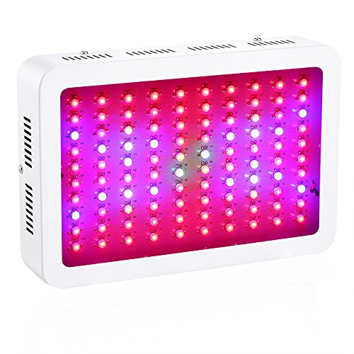 Latest 1000W LED Grow Light Full Spectrum for Greenhouse Hydroponic Indoor Plants Seeding/Growing/Flowering with Double Chips Growing Bulbs (White) Hydroponic System 3