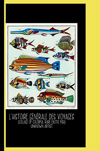 L'Histoire Générale des Voyages (1747-1780) by Unknown Artist : Sketch Book: Collage of Colorful Rare Exotic Fish / Gallery and Museum Art