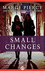 Small Changes: A Novel