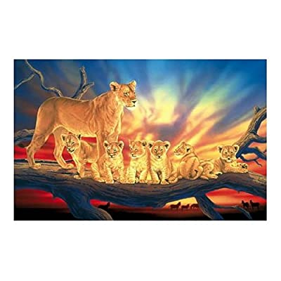 SunsOut Innocence 1000 Piece Jigsaw Puzzle: Toys & Games