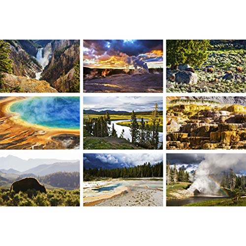 Yellowstone National Park, Nine Photo Set by TravLin Photography, Multiple Sizes (5x7 to 12x18)