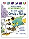 fishcardscom Waterproof Pocket Guide book ~ Coral & Fishes ~ Florida, Bahamas & Caribbean