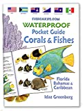 fishcardscom Waterproof Pocket Guide book ~ Coral & Fishes ~ Florida, Bahamas & Caribbean