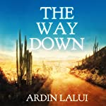 The Way Down | Ardin Lalui