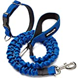 Pet Leash Dog Rope Telescopic Type Wear-Resistant and Firm Outdoor Strong Safety Easy to Use for Walking The Dog (L, Royal -Blue)