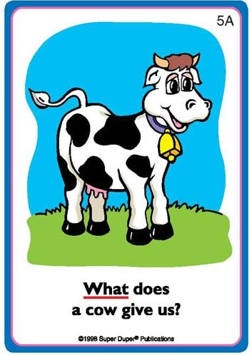 Educational Learning Materials for Children Ask and Answer WH Question Five Fun Decks Combo Super Duper Publications Communication and Language Processing Skills Flash Cards