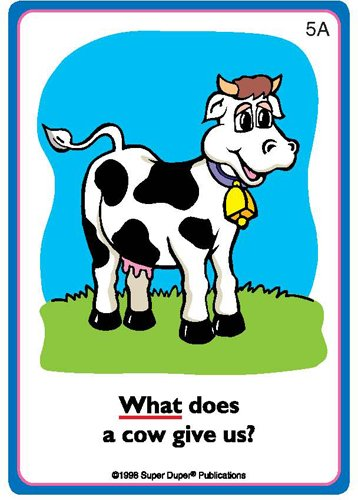 ask and answer  u201cwhat  u201d questions flash card deck