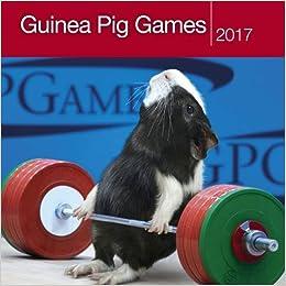 Guinea Pig Games 2017 Calendar Square Amazon Co Uk Paul Cocken 9781848862074 Books