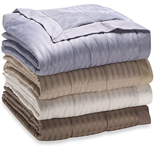 JBFF 250 Thread Count Microfiber Reverse to Fleece Goose Down Alternative Blanket, Twin (68'' x 90''), Quarry Blue