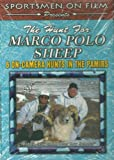 The Hunt For MARCO POLO SHEEP DVD