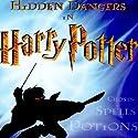 Hidden Dangers in Harry Potter: Teaching Series Audiobook by Steve Wohlberg Narrated by Steve Wohlberg