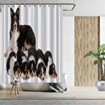 ALUONI Female Border Collie Shower Curtains Set with Hooks,3 Years Old for Shower,59''W x 71''H 7