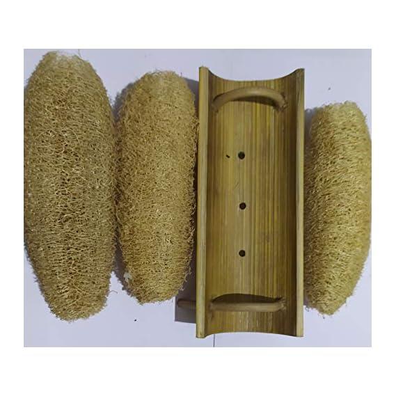 Vaibhav 100% Natural loofah 3 pieces with Bamboo Loofah Stand - Bath Scrubber - Natural Loofah