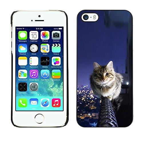 LASTONE PHONE CASE / Coque Housse Etui Shock-Absorption Bumper et Anti-Scratch Effacer Case Cover pour Apple Iphone 5 / 5S / Cat Balcony Feline Sky City View Panorama