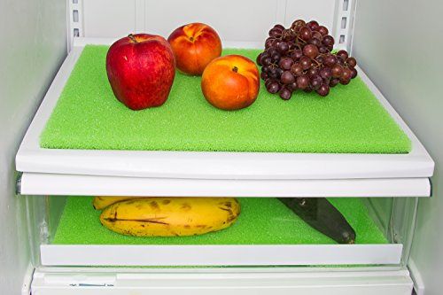 Veggie and fruit life extender